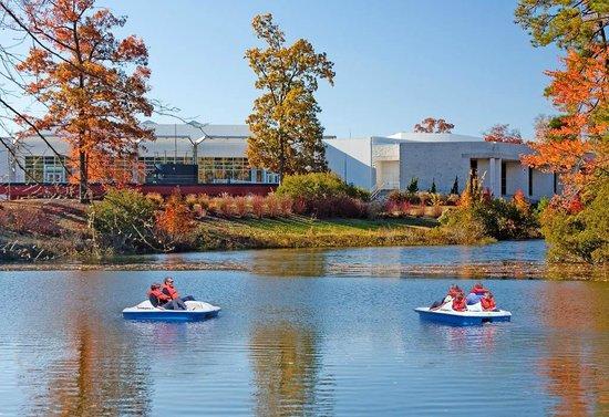 Newport News, VA: Paddle boats