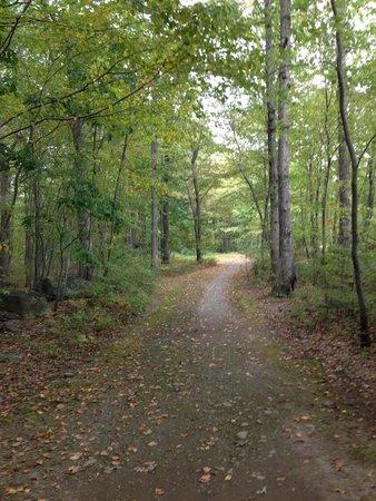 Otter Lake Camp Resort: walking trail