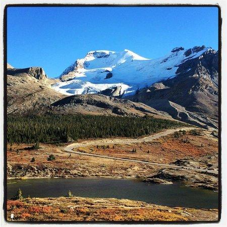 The Glacier View Inn: Double A Glacier