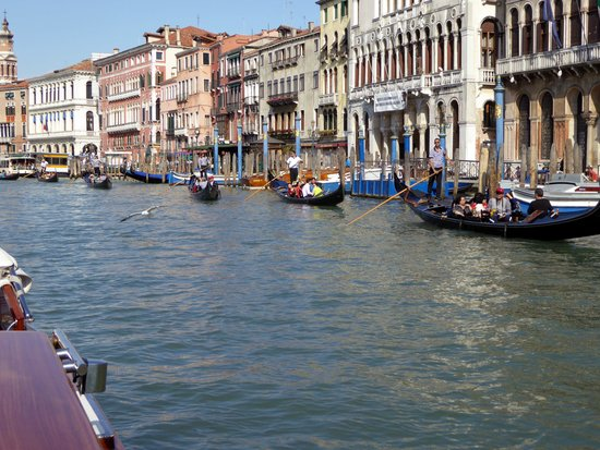 A Guide In Venice : Water Tour