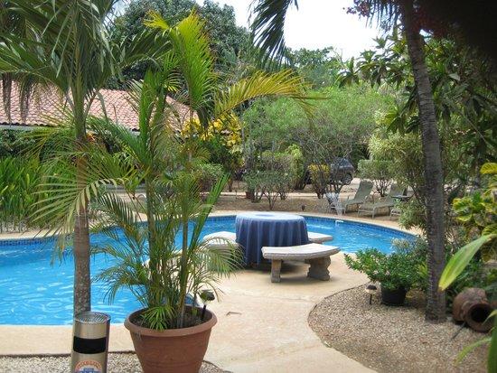 Hotel Bula Bula: Bula Bula Pool