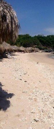 Ixtapa Island (Isla Ixtapa): la Isla Ixtapa