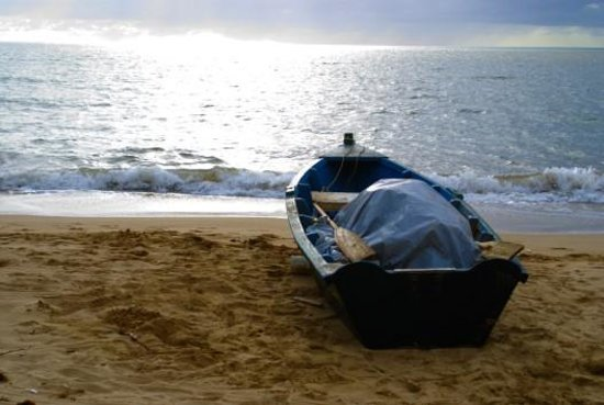 Sea Turtle Beach Apartments: Magnificent Ocean View