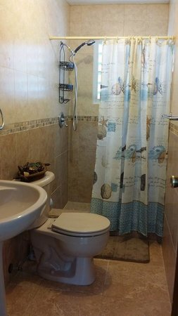 Sea Turtle Beach Apartments: Bathroom with shower
