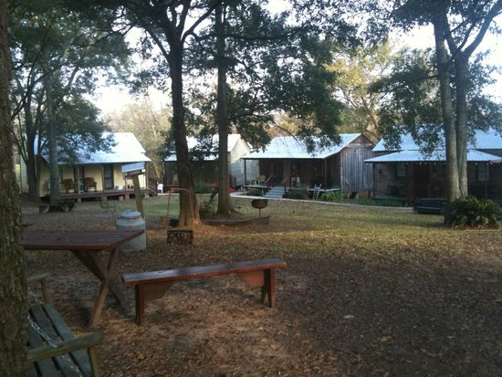 Bayou Cabins: view of cabins