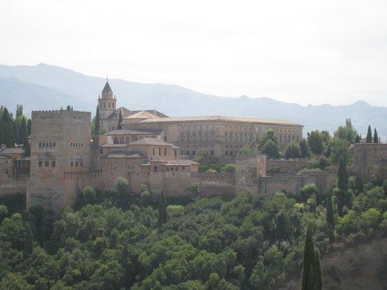 Tour Guru Granada: The Alhambra