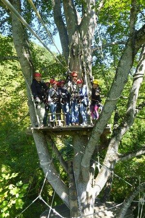 Navitat Canopy Adventures - Asheville Zipline: Start of the Adventure