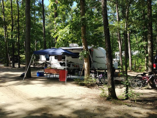 Timberland Lake Campground: A shady campsite