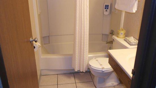 Super 8 Bemidji MN: bathroom