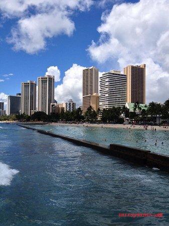 Waikiki Banyan: Waikik Beach