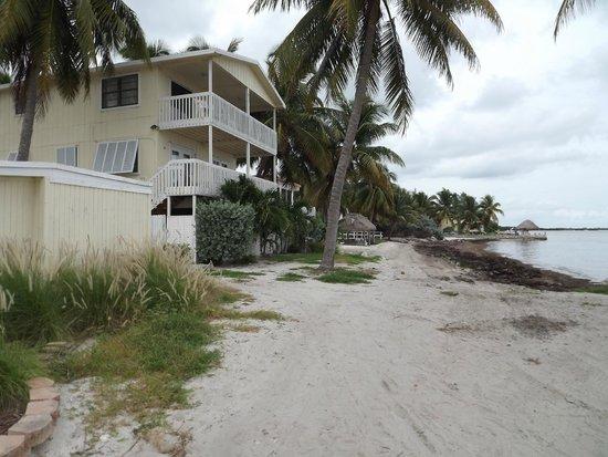 Yellowtail Inn: awful beach