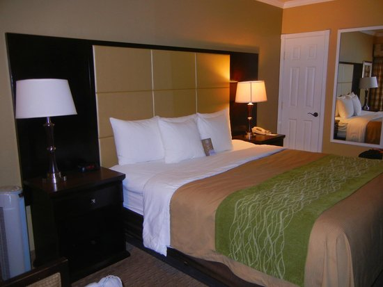 Comfort Inn Carmel By The Sea: Room