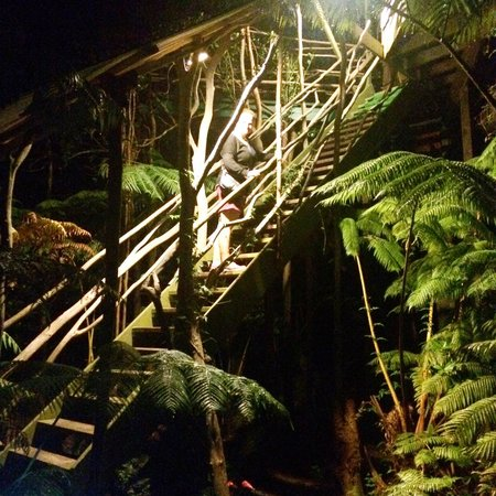 Treehouse Skye: The lit stairs at night