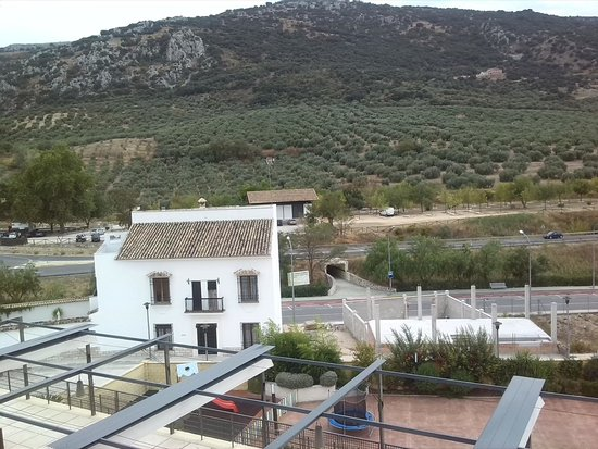 Hotel Mencia Subbetica : Vistas a los olivos de la zona
