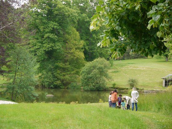 Arboretum du château de Neuvic d'Ussel : Pièce d'eau