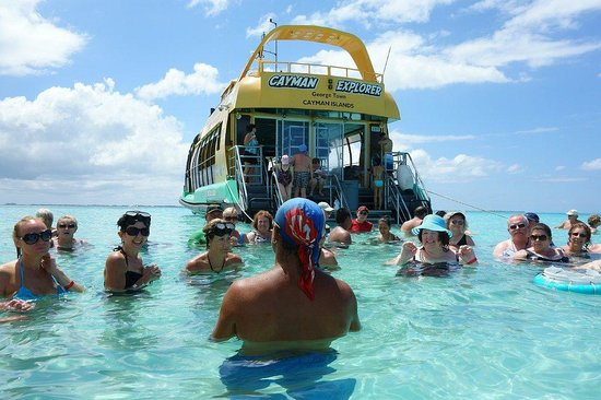 Blue Water Island Adventure Tours Cayman Islands