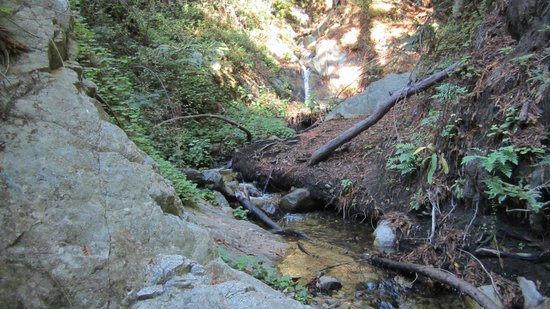 Garrapata State Park : Waterfall on the north fork of Soberanes Creek