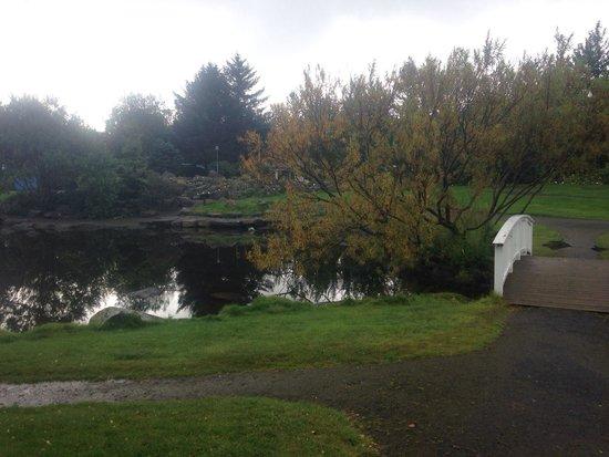 Laugardalur Park: Botanical garden