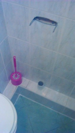 Essex Inn Hotel: No toilet roll holder
