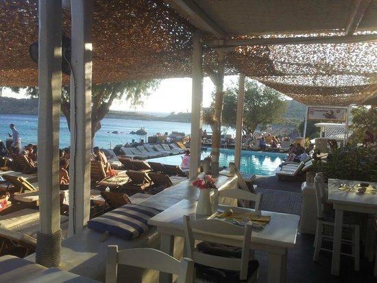 Paraga Beach Hostel & Camping: Ristorante e bar
