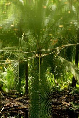 加瑪羅納加勒比小屋照片