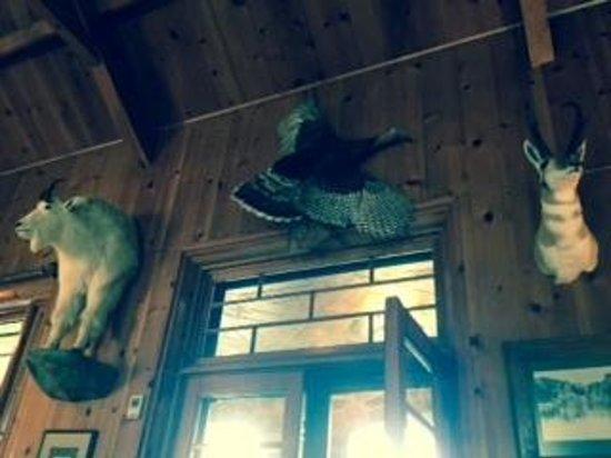 Sylvan Lake Lodge: The Lobby