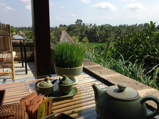 Wapa di Ume Resort and Spa: View from dining room over fields