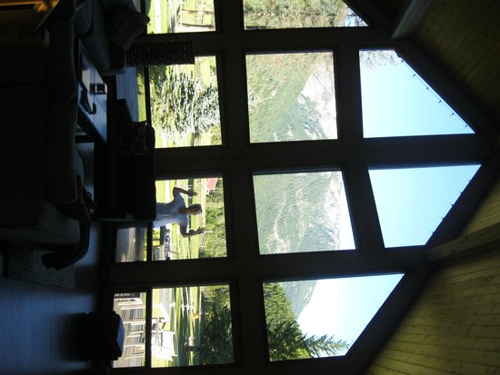 Home Lodge: the view from the lounge area