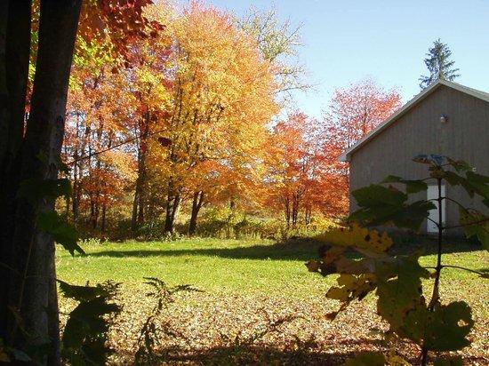 Adams Family Farm: on the grounds