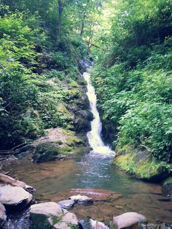 Dark Hollow Falls : Recommend for families with older children the hike is not easy but it is worth it because of th