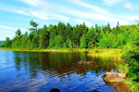 Sangerville, ME: Beautiful pond