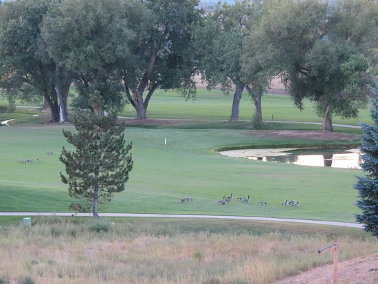 Mariana Butte Golf Course: Family Outing on 2nd Fairway