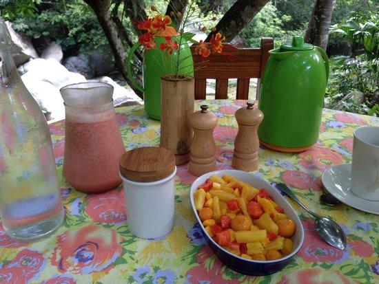 "EcoLodge ""La Bonita"": The fruit and juice at breakfast"