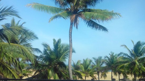Hotel Goldi Sands : VIEW FROM ROOM