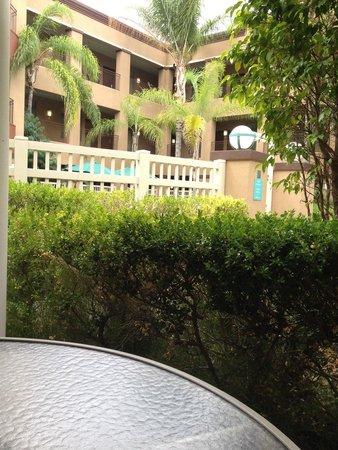Quality Suites San Diego SeaWorld Area: Courtyard