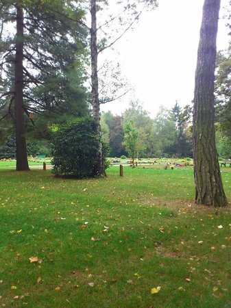 Sudfriedhof: Südfriedhof