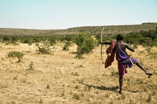 Cheetah Tented Camp: safari a pie