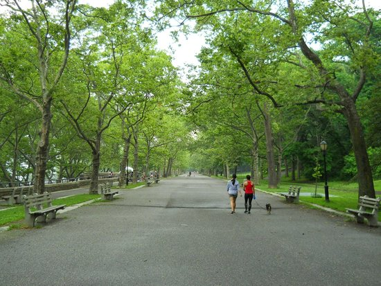 Riverside Park: Green everywhere