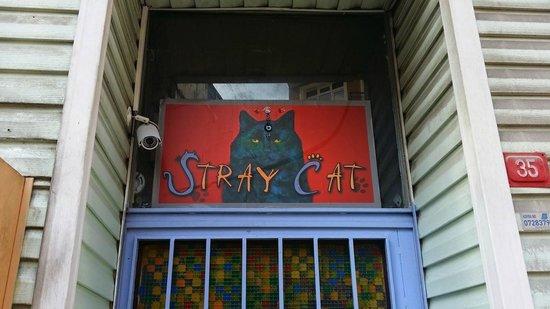 Stray Cat Hostel: Front Door