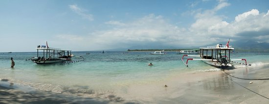 Beach picture of manta dive gili air gili air tripadvisor - Manta dive gili air ...