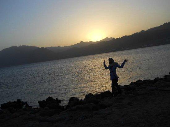 Habibitours - Day Tours: Dahab, Lagouna Beach