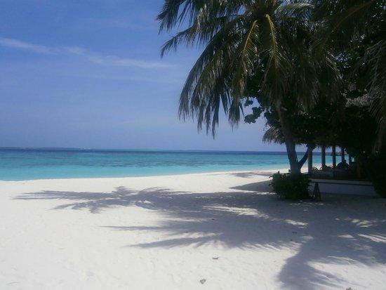 Alimatha Island : ALIMATHA