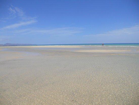 Playa de Sotavento (Playa Risco del Paso y Playa Barca): maree