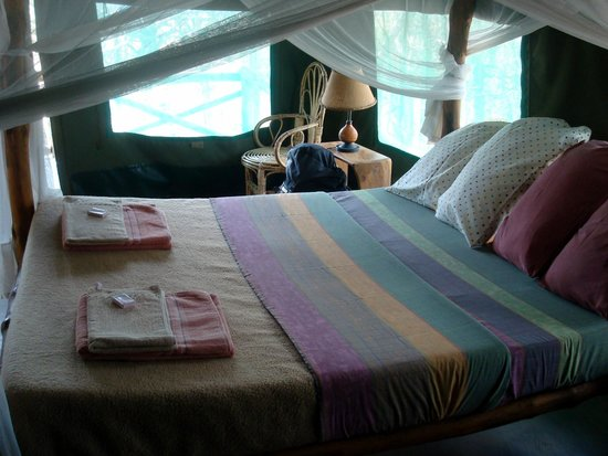 Ol Mesera Tented Camp: Room