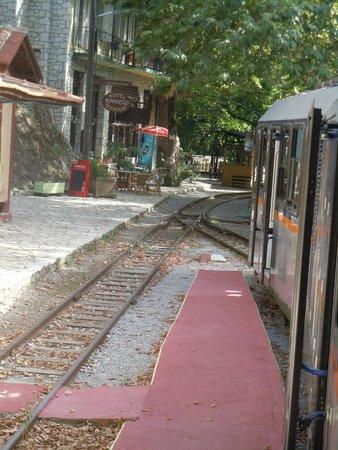 Kalavrita Railway - Odontoto: passeerstationnetje