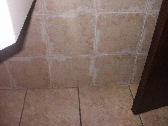 Electra Holiday Village: Filthy bathroom