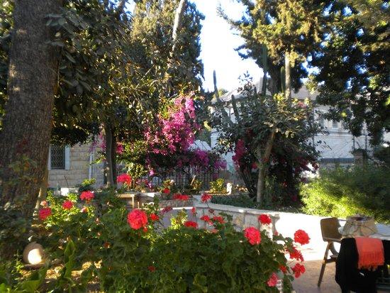 Franciscaines de Marie: Garden area