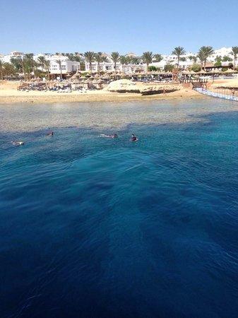 أورورا أورينتال ريزورت شرم الشيخ: Beach from pedilo!