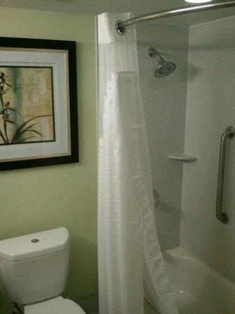 Holiday Inn Express Harrisburg SW-Mechanicsburg: Guest Bath With Holiday Inn Express Shower Heads