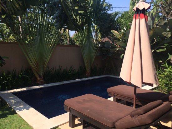 Bali Yubi Villa : Private Pool